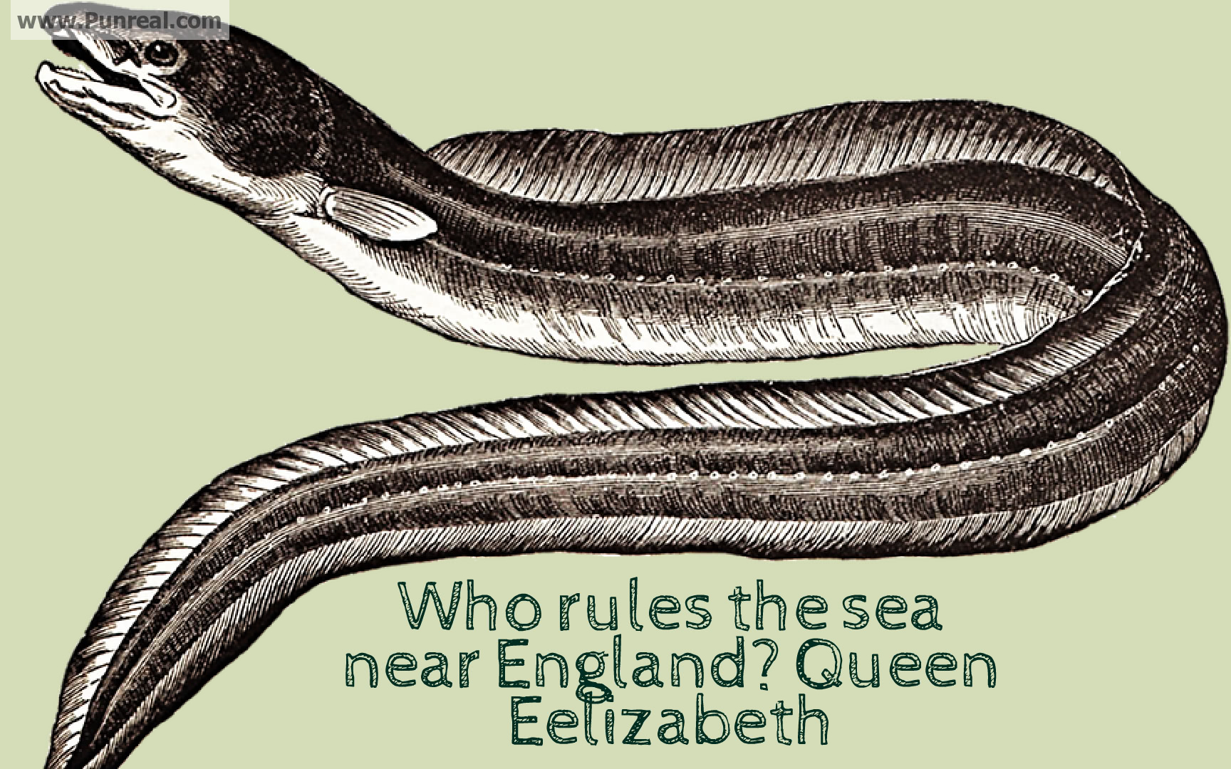 Who rules the sea near England? Queen Eelizabeth