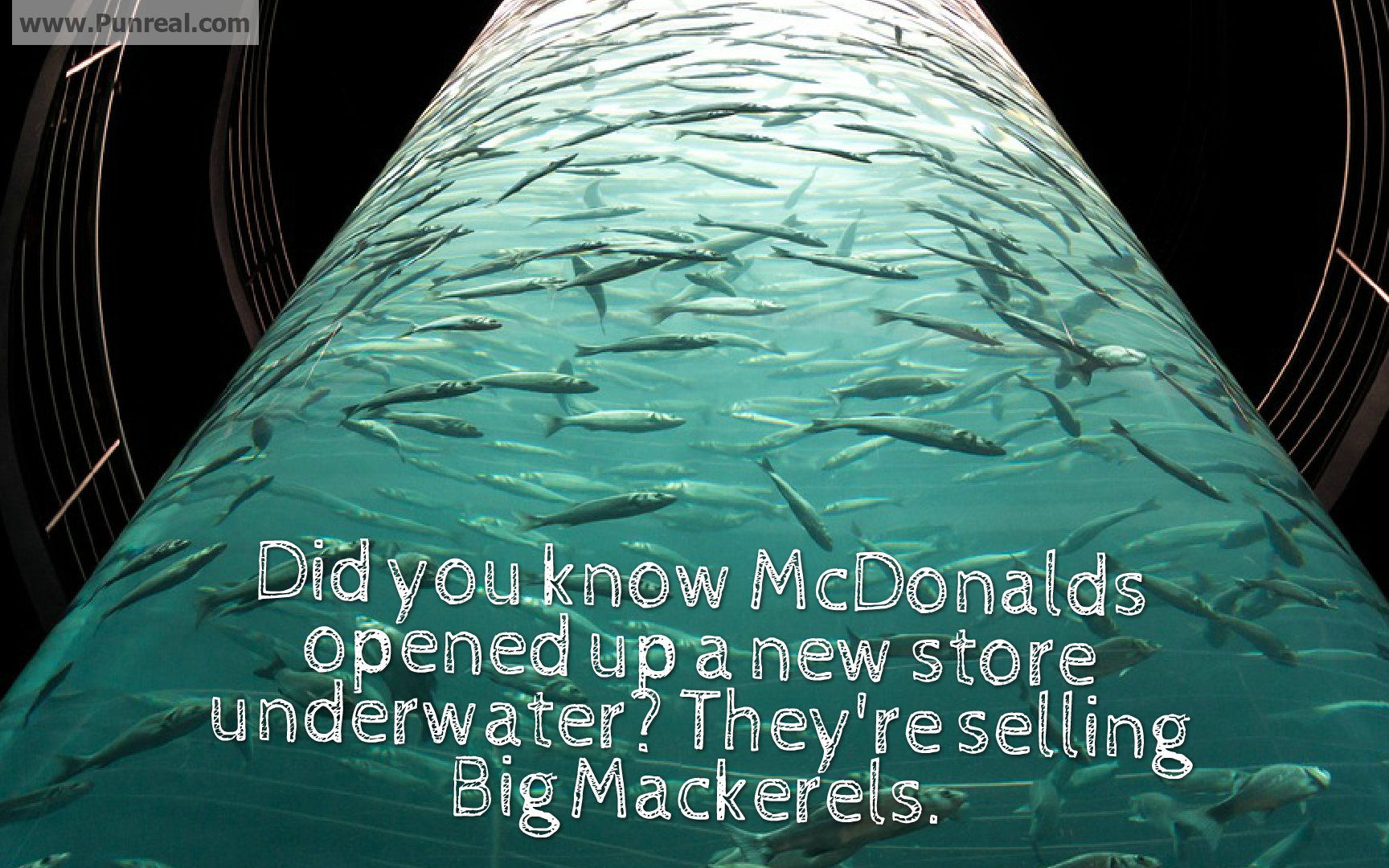 Did you know McDonalds is opening a store underwater to sell Big Mackerels?