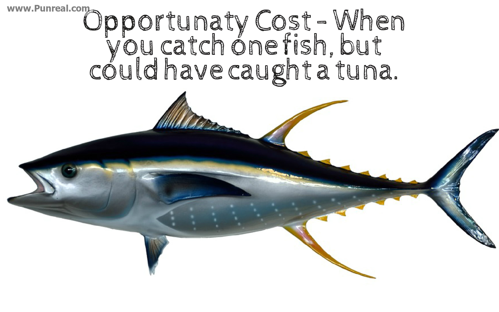 Opportunaty cost is when you catch one fish but could have caught a tuna.