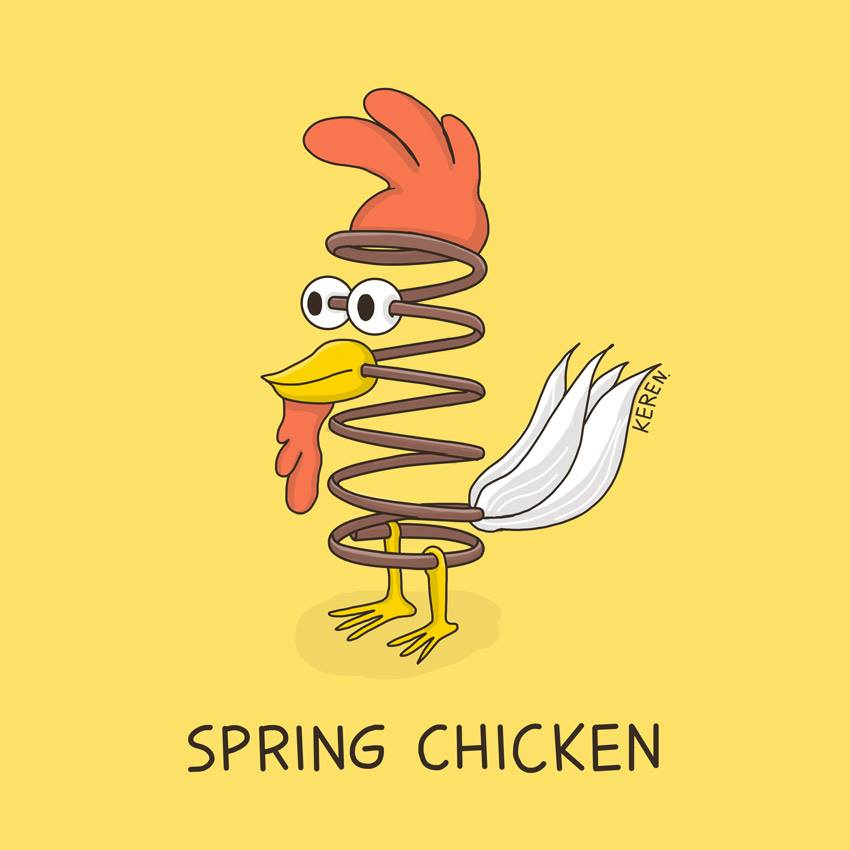 Spring Chicken Pun
